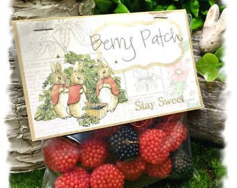 NEW - Mopsy's Berry Patch Candy Bag Tags - Beatrix Potter Party Favor Kit - MISS MOPSY
