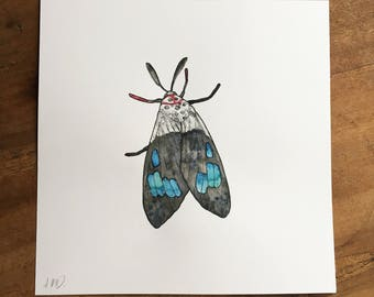 A4 Square Blue Moth Original Watercolour Illustration - Free UK shipping!