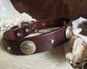 Leather dog collar with real buffalo nickel conchos and silver studs, western dog collar