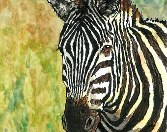 Art Print // ZEBRA - Ink & Watercolor