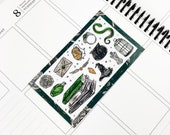 Ambitious // Deco (Glossy Planner Stickers)
