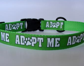Lime Green Adopt Me Dog Collar and Leash - Ready to Ship!