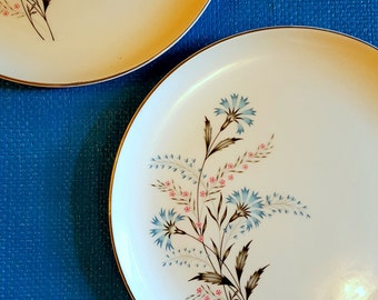 Vintage dinner plates,Taylor,Smith & Taylor plates,Bachelor Buttons plates,mid century plates,set of 2 plates,TS 117 plates,made in USA