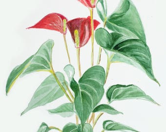 Anthurium Art/Anthurium Watercolor/Original Watercolor/Anthurium Painting/Red Flower Art/Red Flower Painting/Original Art/Hand-made gift/Art