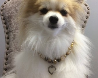 Pet necklace holiday addition