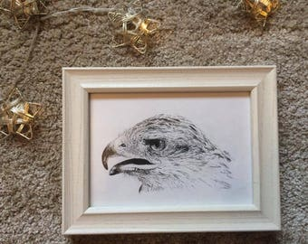 Screech | Framed Original Pen and Ink Drawing