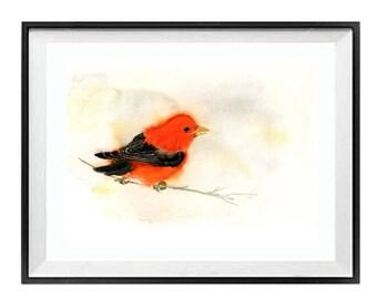 Bird Prints, Nature painting, Red Bird, Bathroom, Wall Art, Decor, Scarlet, Tanager, Song bird Red, Bird art print, Valentines Sale, LaBerge