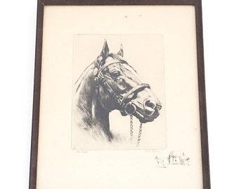 "Antique ""Man o' War"" Horse Etching by RH Palenske - Horse Etching - Equestrian Art Print"