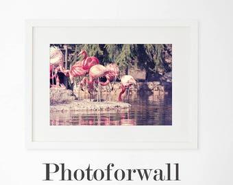 Flamingo print/Printable wall art Nursery decor/nursery animal print/animal art/flamingo art printable/, flamingo digital art download,