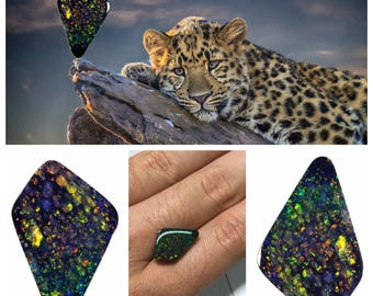 5.15 Ct Unique Leopard Pattern BLACK OPAL !! Lightning Ridge Australian Black Opal with Unique Leopard Pattern one of a kind! with Video!