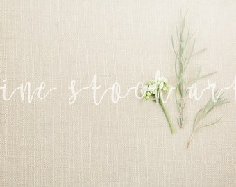 Linen and Greenery Stock Image |Instant Download | Add Your Own Product/Text Stock Image