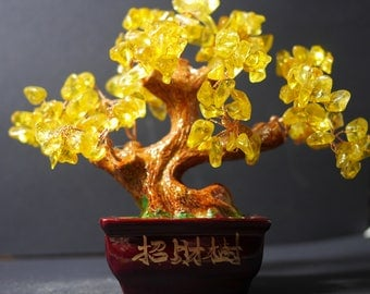 Money Tree | Feng Shui Tree | Lucky Tree | Fortune Tree | Crystal Tree | Bonsai Money Tree |  Yellow Bonsai Tree