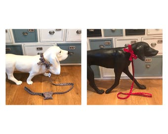 Vintage Multicoloured Spot Dog Lead and Collar Sets ( LEASHES & COLLAR SETS)
