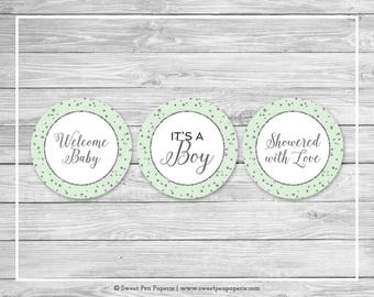 Mint and Silver Baby Shower Cupcake Toppers - Printable Baby Shower Cupcake Toppers - Mint and Silver Baby Shower - Cupcake Toppers - SP152