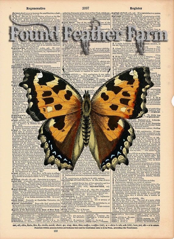 "Vintage Antique Dictionary Page with Antique Print ""Yellow Orange Butterfly"""