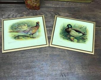 Vintage Wall Decor Pheasants and Ducks Wood