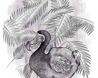 The last Dodo - High quality giclee print of original illustration