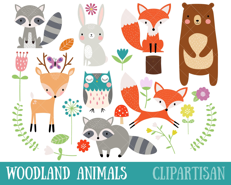 Woodland Animal Clipart Fox Bear Raccoon Deer Owl