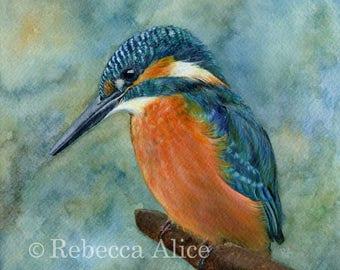 Kingfisher - Blank Greetings Card