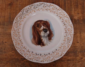 Saucers are white - Golden frieze - Portrait of Breton - genuine porcelain Spaniel dog decor French vintage plate