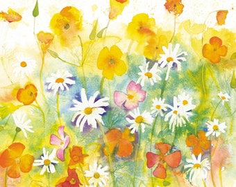 Californian Poppies and Daises Watercolour Print