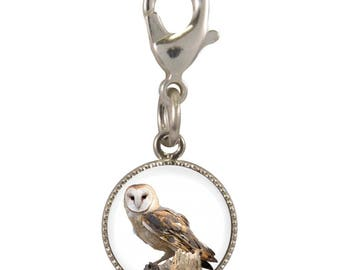 Owl Image On Silver Plated Clip Charm