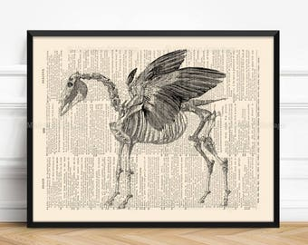 Pegasus Bones Print, horse lover gift, Greek Mythology, Gothic Girl Gift, Legendary Creature, Funny Dorm Poster, Pegasus Skeleton, Wall  116