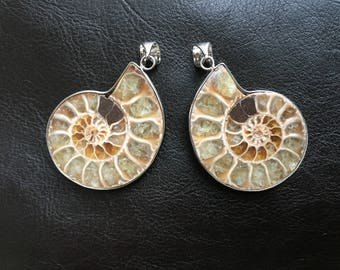 Set of Two Ammonite Fossil Pendants with Bails, Ammonite Pendant, Ammonite