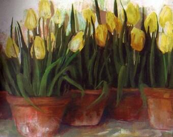 Yellow Tulips Wallpaper Border 37121 SI