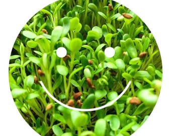 Sprout Seed Refills