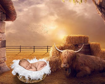 Newborn digital backdrop  |  Newborn photography photo props background fantasy perfect for baby infant boys & girls | Hammock  backdrops