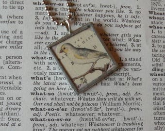 White Bird - Oiseaux -  Antique Orinthology Print Collage - Pendant Made with Hand-Soldered Glass