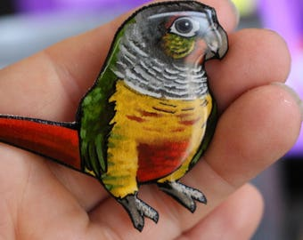 Conure Magnet: Great gift for conure lovers for car locker or fridge