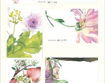 Impressionist Botanical Poster - Studies in Pink