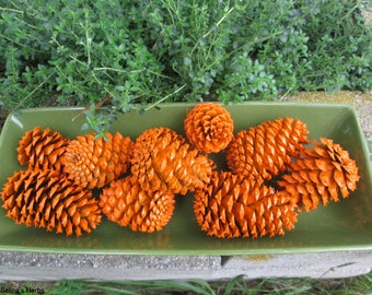 Orange Painted Pine Cones,  Theme Pinecone, Halloween Decoration, Party Decoration, Fall Decor Pine Cones, Wreath Cones, Centerpiece Cone
