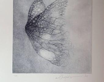 Contemporary Print Capture of a leaf, birth of a butterfly...