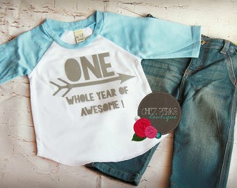 first birthday boy , first birthday boy outfit , first birthday outfits , first birthday shirt , One whole year of awesome , for boys