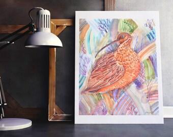 Curlew Art Print, British Bird Wall Art, Colourful Bird Art, Beautiful Bird Art, Curlew Wall Art, Whimsical Bird Art