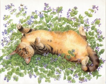 Cats in the Sun - Lesley Anne Ivory