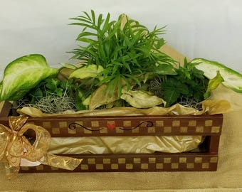 """Medium Wood  Crate """"SWEET"""" from Campagne collection"""