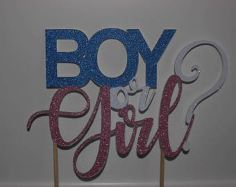 Gender Reveal Cake Topper, Gender Reveal Party, Boy or Girl