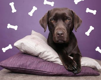 Dog Bone Wall Sticker - Dog Pattern Decal Doggy Pet Decor   PP136