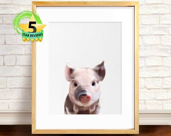 Piglet Photo, Pig Print, Farm Animal Print, Nursery Decor, Modern Farmhouse, Kids Room Printable, Farm Nursery Animals, Digital Download
