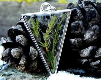 Pressed Green Juniper Plant Resin Necklace, Nature Inspired Terrarium Jewelry, Clear Resin Necklace, Forest Gift, Nature Lovers Gift