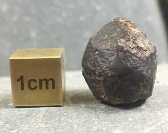 NWA 869 Meteorite [RST002]