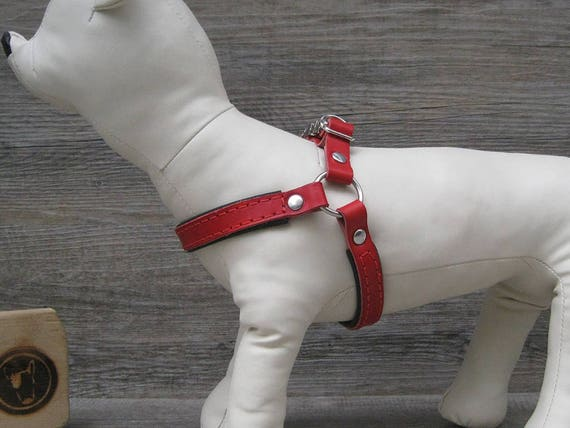 Step In Dog Harness in Red Leather, No Pull Harness for Small Dogs, Comfort and Adjustable Dog Harness, Handmade Colorful Dog Harness