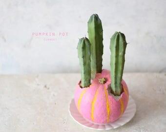 Pumpkin Pot (Large) pink