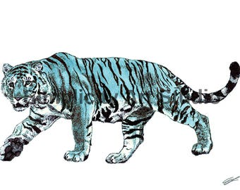Tiger Original Artwork Prints / Various Colors Available/ Various Sizes Available
