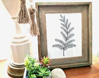 Hand Drawn-Fern Leaf Botanical- 8x10 printable