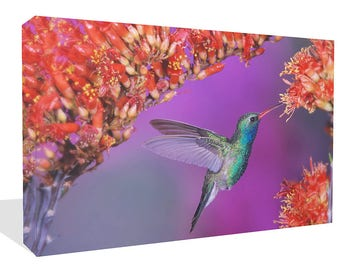 Pretty Humming Bird and Flowers Print Wall Art Ready To Hang Or Poster Print